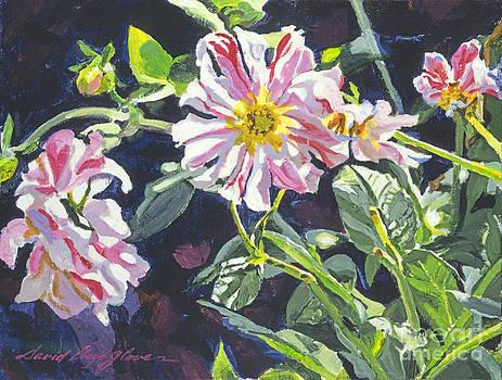 David Lloyd Glover -  Mountainside Flowers