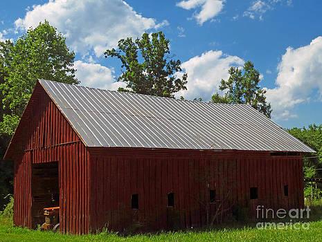 Old Barn On Mountain by Lisa Jones
