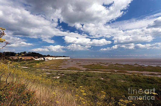 Pegwell Bay Nature Reserve by John Gaffen