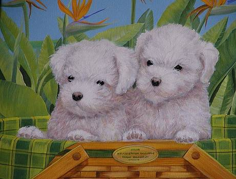 Puppy Buddies by Bonnie Golden