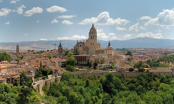 Segovia Cathedral by Viacheslav Savitskiy