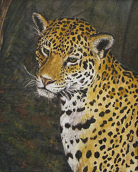 South American Jaguar by Elaine Booth-Kallweit