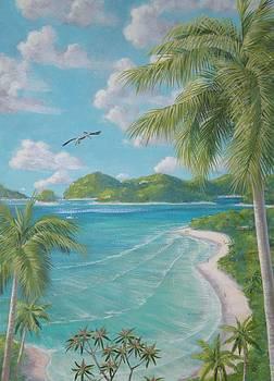 St. John Pelican Point by Bonnie Golden