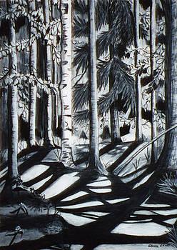 Stella Sherman -  Take the Maine Path