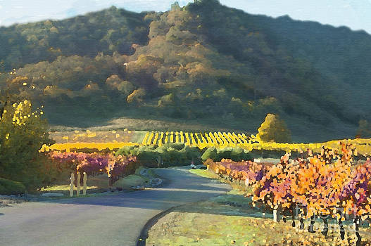 Artist and Photographer Laura Wrede -  The Hills of Clos La Chance Winery