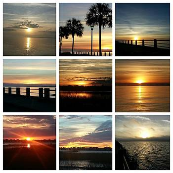 Totally Beautiful Charleston South Carolina by Joetta Beauford