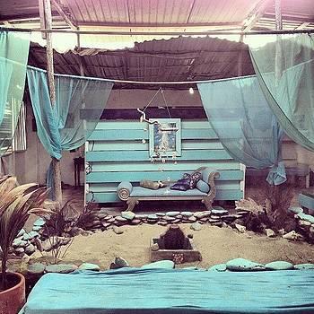 🐢 #venezuela #paradise #latortuga by Alejandra Lara