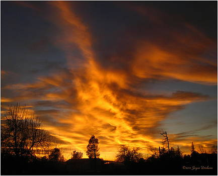 Joyce Dickens - 02 05 11 Sunset Two