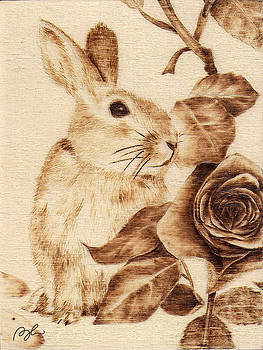 #5-Rabbit by Perry Chow