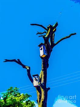 Algirdas Lukas - 06 Dead Tree waiting for new life