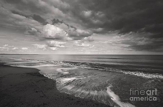 Darren Burroughs -  Dunwich Beach Southwold Suffolk