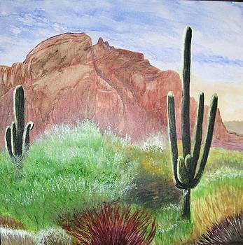 2 Saguaros by Maris Sherwood