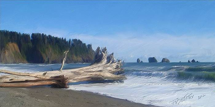 A Day on the Olympic Coast by Forest Stiltner
