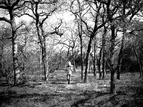 A Walk In The Woods by Shey Stitt