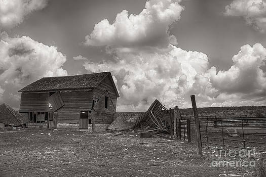 Abandoned Farm by Joenne Hartley
