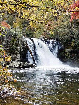 Abram Falls by Regina McLeroy