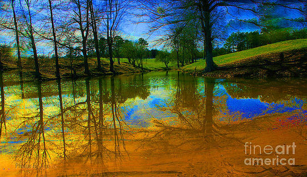 Abstract Reflections  by Jinx Farmer