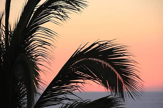 Acapulco sunset by Linda Russell