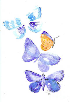 Adonis Blue by Bernadette Crotty