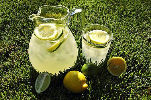 Afternoon Lemonade by Karin Hildebrand Lau