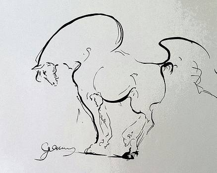 Alptekin GORUNUS by Alptekin GORUNUS