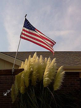 American Flag by Susan Kortesmaki