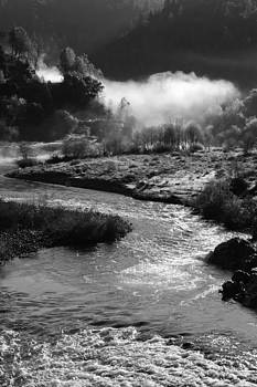 American River Confluence by Sherri Meyer