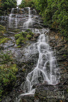Barbara Bowen - Amicola Falls