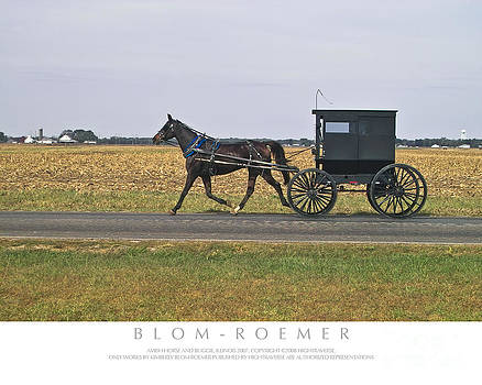 Kimberly Blom-Roemer - Amish Horse and Buggy