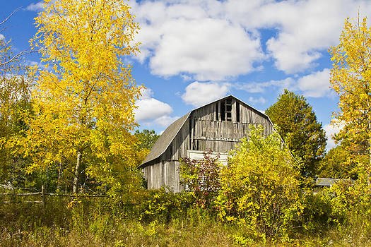 An Old Barn by Wayne Stabnaw
