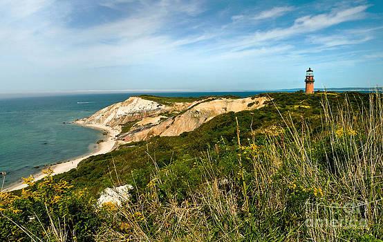 Michelle Wiarda - Aquinnah Gay Head Lighthouse Marthas Vineyard Massachusetts