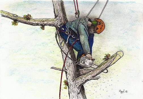 Arborist Tree surgeon stihl 020T by Gordon Lavender