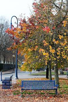 Autumn by Arylana Art