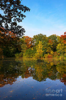 Angela Doelling AD DESIGN Photo and PhotoArt - Autumn at the Lake