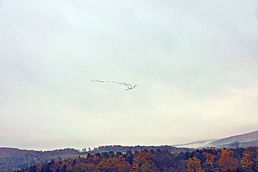 Byron Varvarigos - Autumn In The Butternut Valley-one