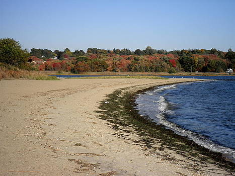 Kate Gallagher - Autumn On Narragansett Bay