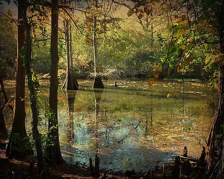 Terry Eve Tanner - Autumn on the Bayou