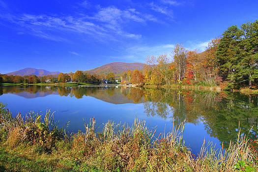 Anne Barkley - Autumn Reflections 1