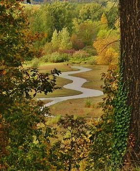 Charles Lucas - Autumn Stream 2
