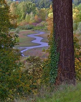 Charles Lucas - Autumn Stream