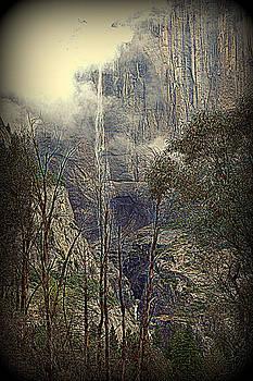 Lynn Bawden - Autumn View of the Falls