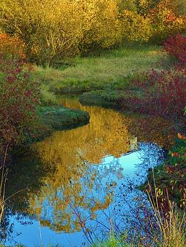 Charles Lucas - Autumns Stream of color