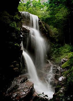 Heather Applegate - Avalanche Falls