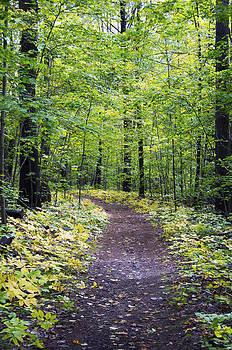 Elaine Mikkelstrup - Awenda Path