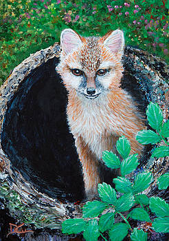 Dee Carpenter - Baby Red Fox