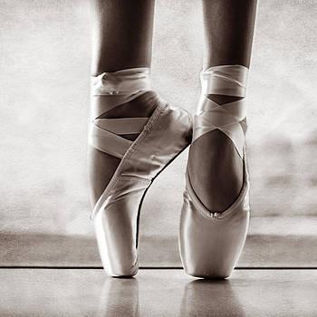 Ballet En Pointe by Laura Fasulo