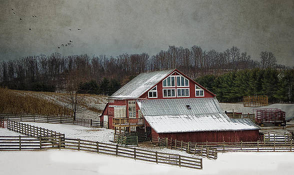 Barnyard by Kathy Jennings