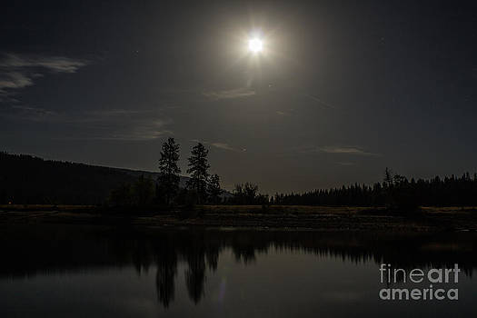 Bass Lake Full Moon by Lisza Anne McKee