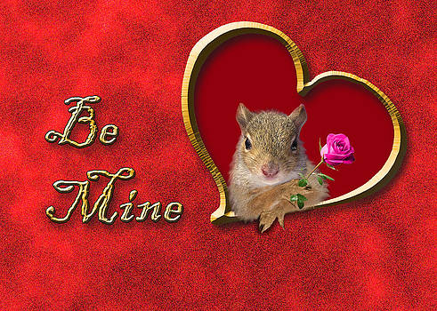 Jeanette K - Be Mine Squirrel