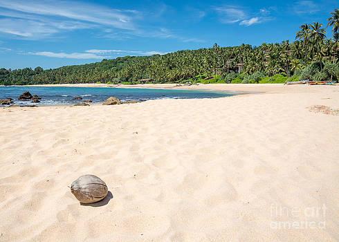 Beach with coconut. by Christina Rahm
